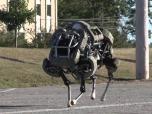 Четвероногий робот WildCat